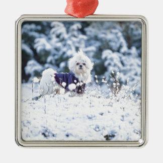 Cute Maltese Dog Christmas Ornament