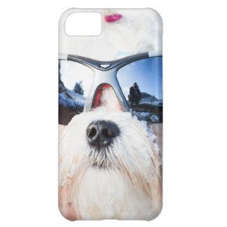 Cute Maltese Dog iPhone 5C Case