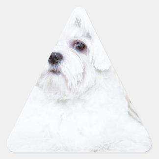 Cute Maltese Dog Triangle Sticker
