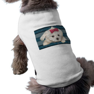 Cute Maltese Dog with Creme Fur and Red Ribbon Dog Clothing