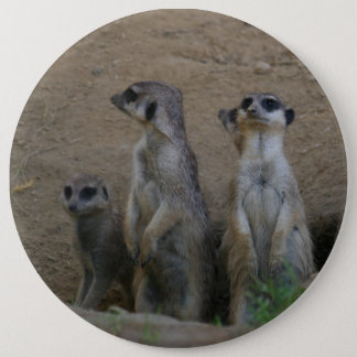 Cute Meerkat Family saying Hello 6 Cm Round Badge
