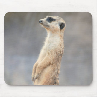 Cute Meerkat  Mouse Pad