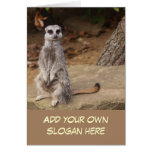 Cute Meerkat Photo to Customise Yourself Greeting Card
