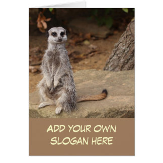 Cute Meerkat Photo to Customize Yourself Greeting Card