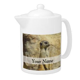 Cute meerkat photograph