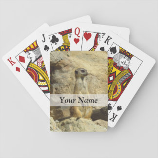 Cute meerkat photograph playing cards