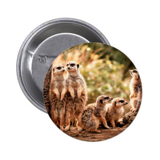 Cute Meerkats 6 Cm Round Badge