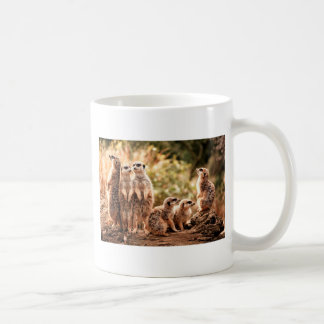 Cute Meerkats Basic White Mug