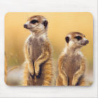 Cute Meerkats sitting up Mouse Mat