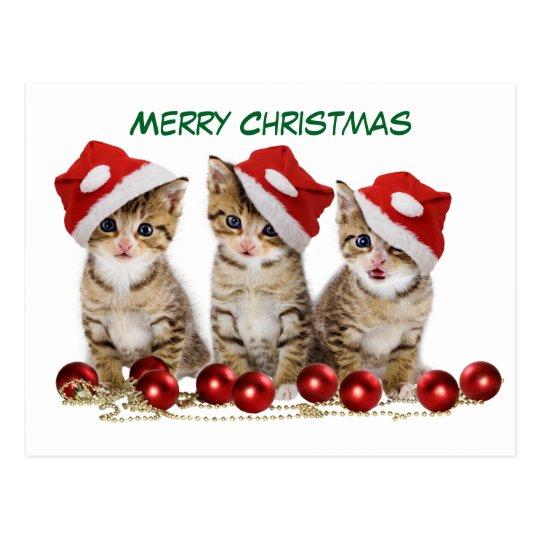 Cute Merry Christmas Kittens Postcard
