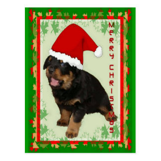 Cute Merry Christmas Puppy Post Cards