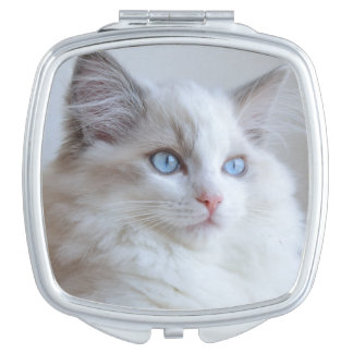Cute mirror with a kitten compact mirrors