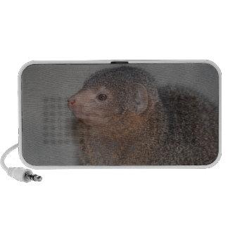 Cute Mongoose Laptop Speaker