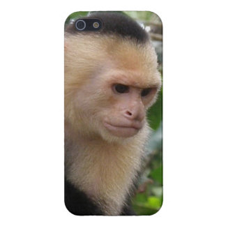 Cute Monkey iPhone 5/5S Cases