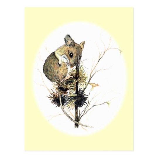 Cute Mouse Postcard