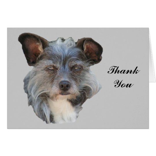 Cute Mutt Terrier Mixed Breed Dog Thank You Card
