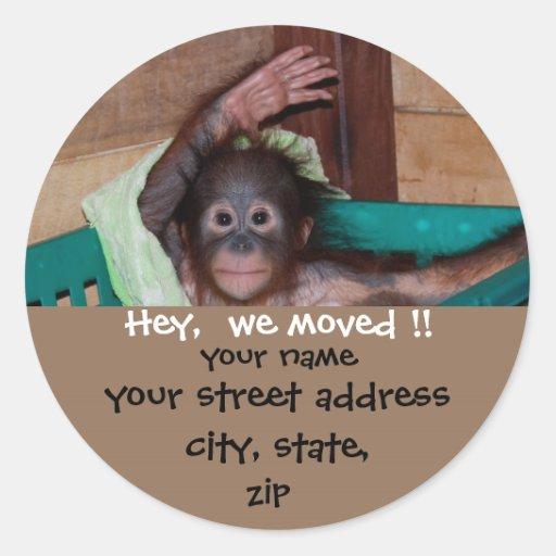 Cute New Address Wildlife Labels Sticker