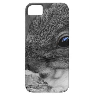 Cute New York City Squirrel iPhone 5 Covers