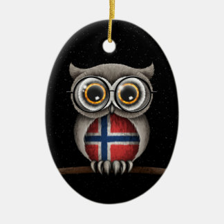 Cute Norwegian Flag Owl Wearing Glasses Christmas Ornament