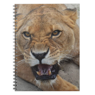 Cute Notebook with lion