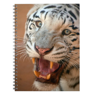 Cute Notebook with white tiger