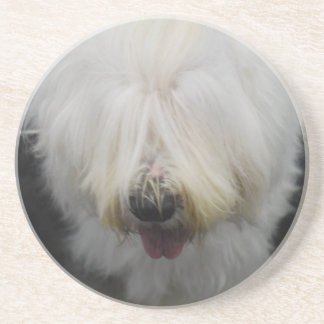 Cute Old English Sheepdog Coaster