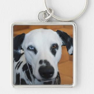 Cute One Blue Eye Dalmatian Dog Keychains