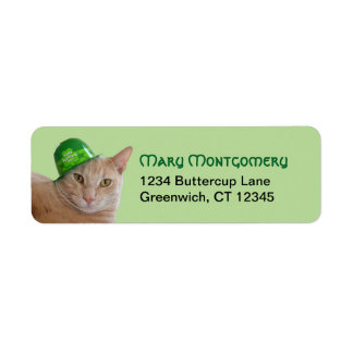 Cute Orange Cat Wearing a Green Irish Hat