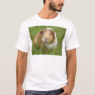 Cute orange-white guinea pig in grass T-Shirt