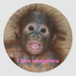 Cute orangutan baby round stickers