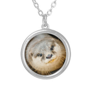 Cute Otter, Animal Portrait, Nature Photography Silver Plated Necklace