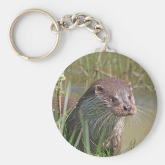 Cute otter photo keychain, gift idea key ring