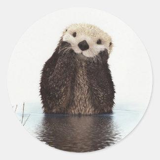 Cute Otter Wildlife Image Round Sticker