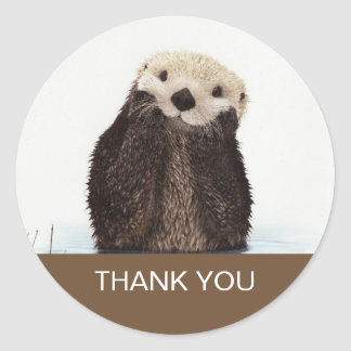 Cute Otter Wildlife Image Thank You Round Sticker