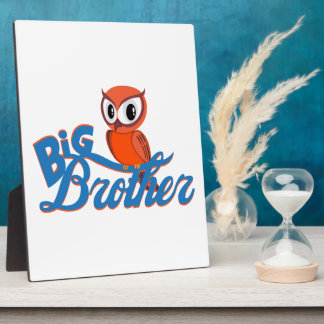 Cute Owl Big Brother Display Plaque
