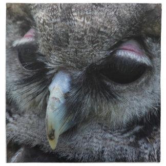 Cute Owl Napkin