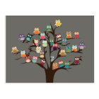 Cute Owl On Tree   Background Postcard