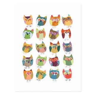 cute Owl post card, colourful owls, owl lovers.