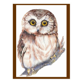 Cute Owl - Watercolor Bird Collection Postcard