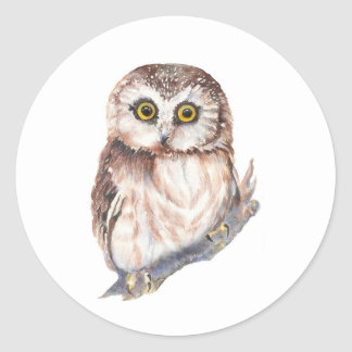 Cute Owl - Watercolor Bird Collection Stickers