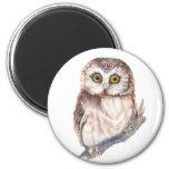Cute Owl ,Watercolor Bird Nature, 6 Cm Round Magnet