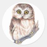 Cute Owl ,Watercolor Bird Nature, Round Sticker