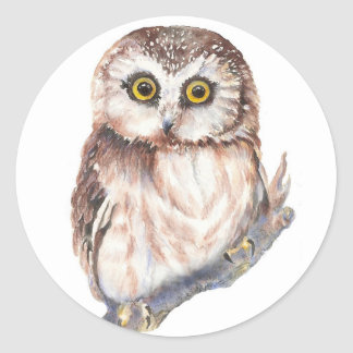 Cute Owl ,Watercolor Bird Nature, Round Sticker
