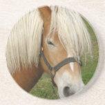 Cute Palomino Pony Coaster