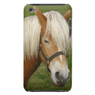 Cute Palomino Pony iTouch Case iPod Case-Mate Cases
