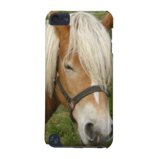 Cute Palomino Pony iTouch Case iPod Touch 5G Cover