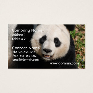 Cute Panda Bear Business Card