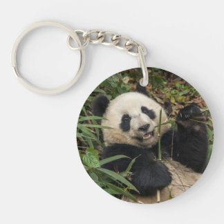 Cute Panda Eating Bamboo Key Ring