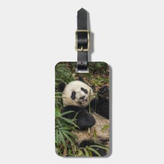 Cute Panda Eating Bamboo Luggage Tag