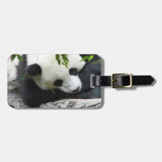 Cute Panda Luggage Tag